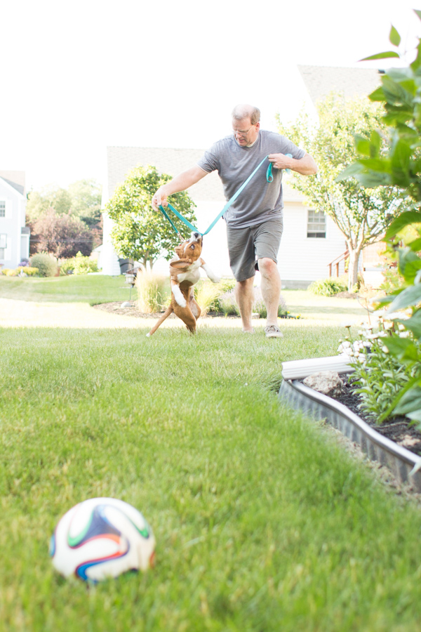 man playing tug with puppy,