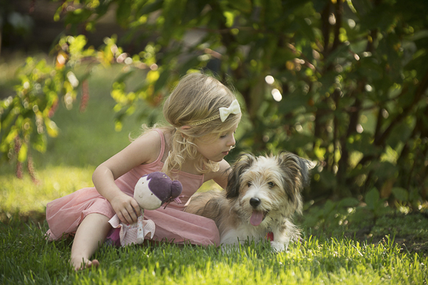 little girl leaning in to kiss dog, Sheltie mix