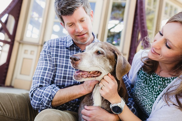couple with senior dog in their laps,