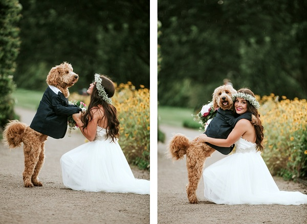 bride and her dog, love between dog and human