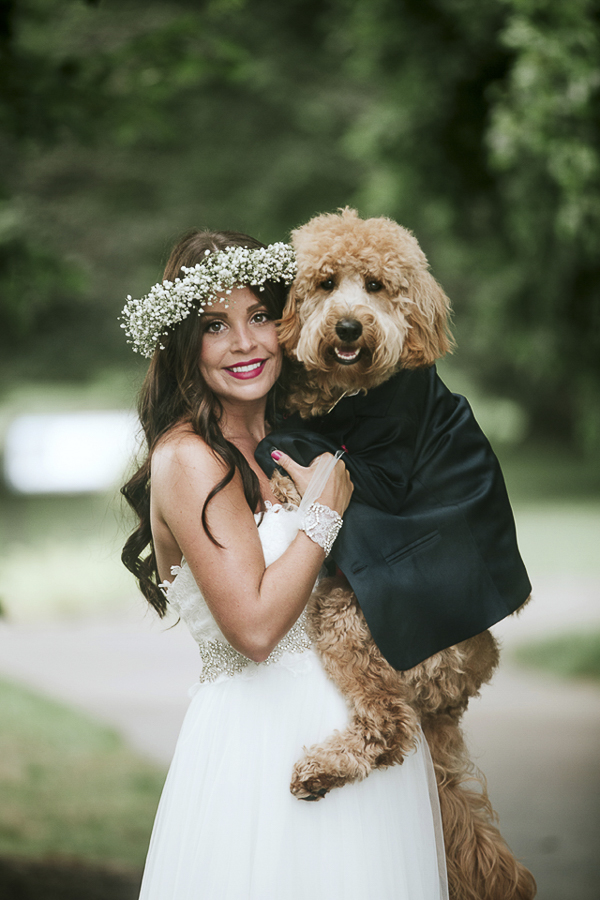 bride and dog, wedding dog, best dog