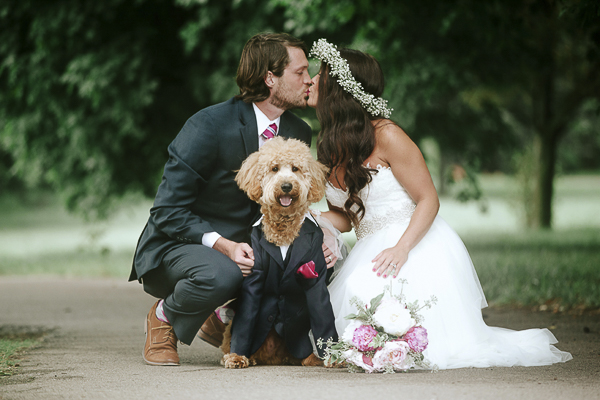 wedding dog, goldendoodle in tux, bride, groom, dog