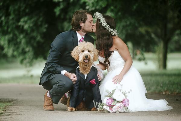 wedding dog, goldendoodle in tux, bride, groom, dog