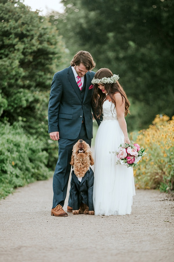 dog in tux looking up at humans, bride and groom looking at dog