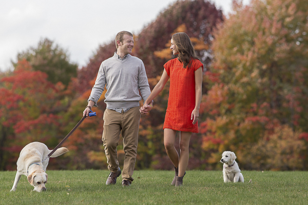 Fall engagement photos with English Lab and Golden Retriever Puppy