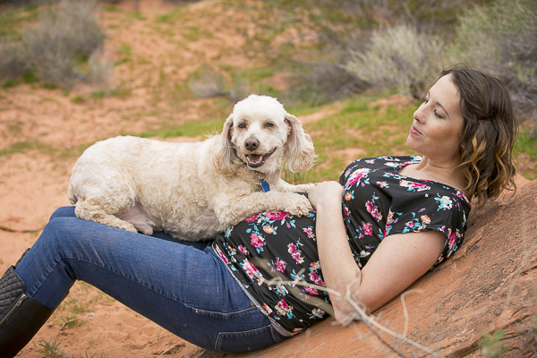 dog resting on pregnant woman's lap in desert, maternity photos with dog, Cockapoo