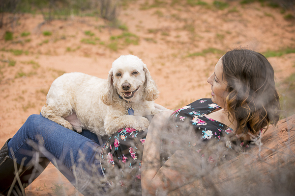 smiling Cockapoo in desert, ideas for maternity photos with dog