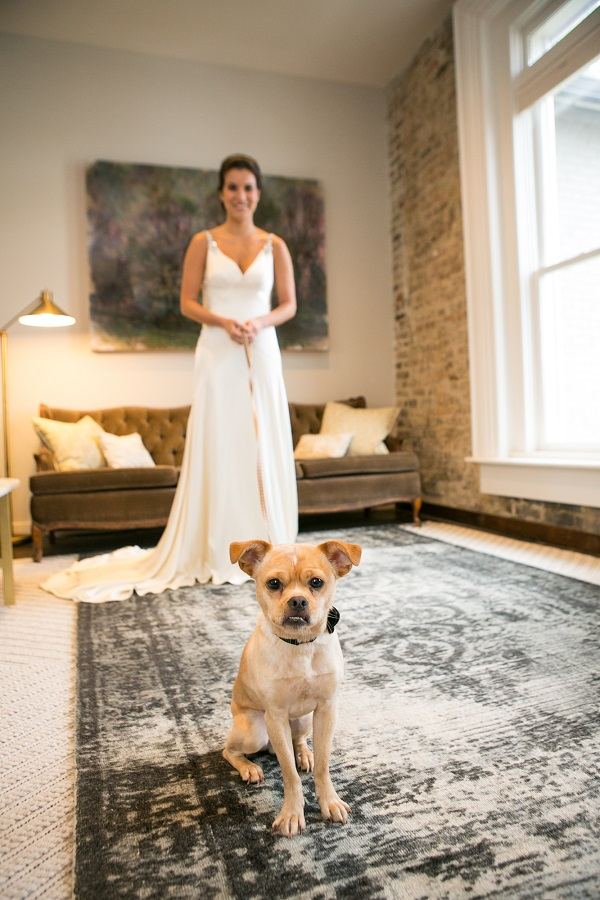 bride and cute small dog, wedding portraits with dog