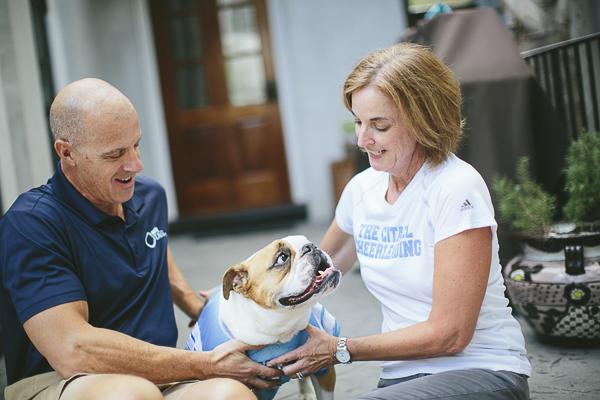 English Bulldog wearing blue Citadel shirt looking up at woman,