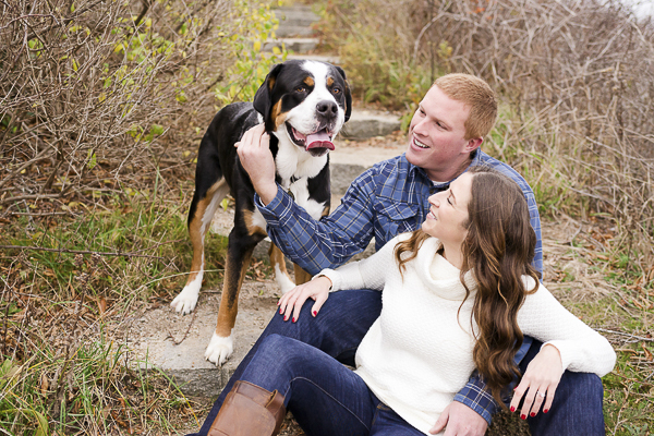 Greater Swiss Mountain dog, engagement photos with dog