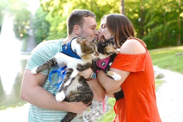 couple kissing while holding their cats, cat friendly engagement session
