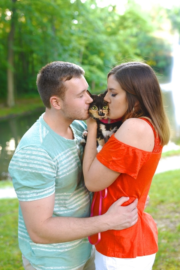 couple kissing calico cat, engagement pictures with cats