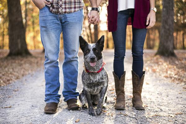 dog sitting between couple, TN autumn photographer