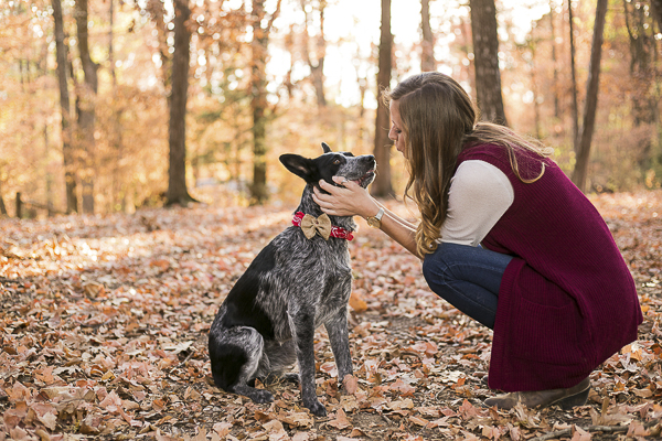 Cattle Dog and woman, canine-human bond, on location dog photography