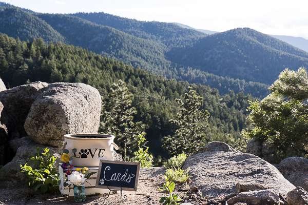 dog wedding details, Colorado elopement