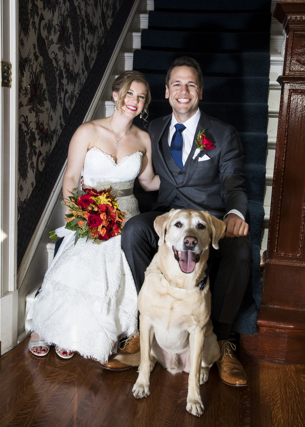 bride, groom,wedding dog on stairs