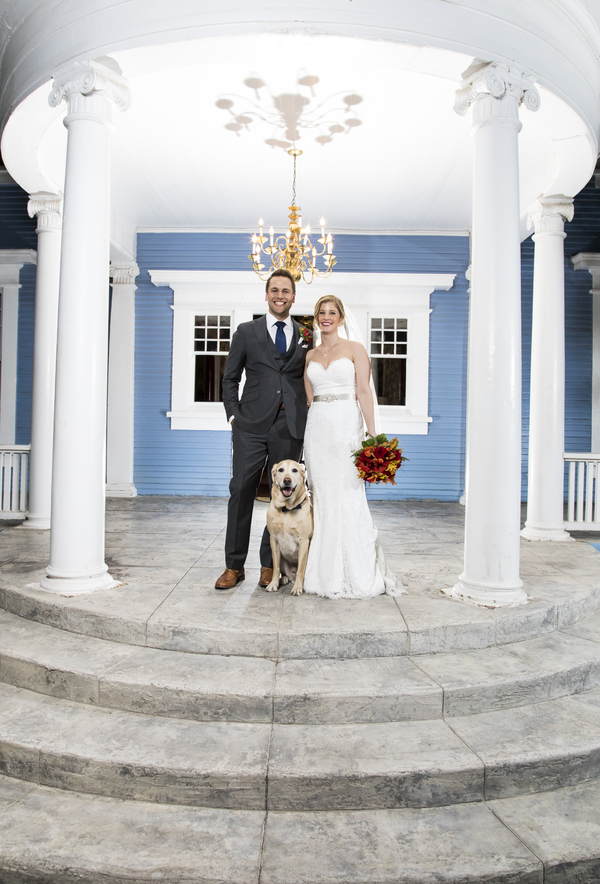bride, groom, and Retriever, dogs in wedding photos