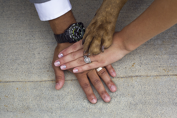 hands and paw, wedding photos with dog