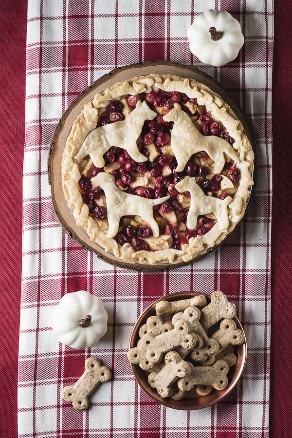 cutest pie ever, dog themed Thanksgiving, Vita Bone Treats