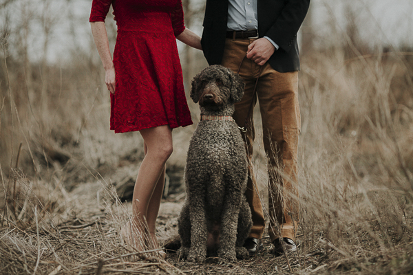 Wilmington, DE, on location portraits with dog, engagement photos with Labradoodle
