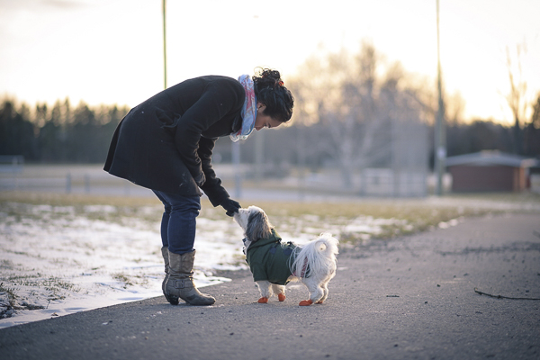 woman giving dog a treat, lifestyle dog photography