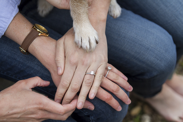 paw and women's hands, engagement photos with dog