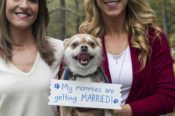 "small dog wearing Save the Date sign, ""my mommies are getting married"""
