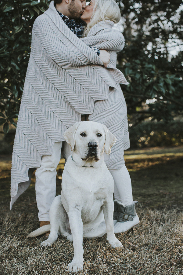 Handsome white English Labrador, couple wrapped in blanket, engagement photos with dog