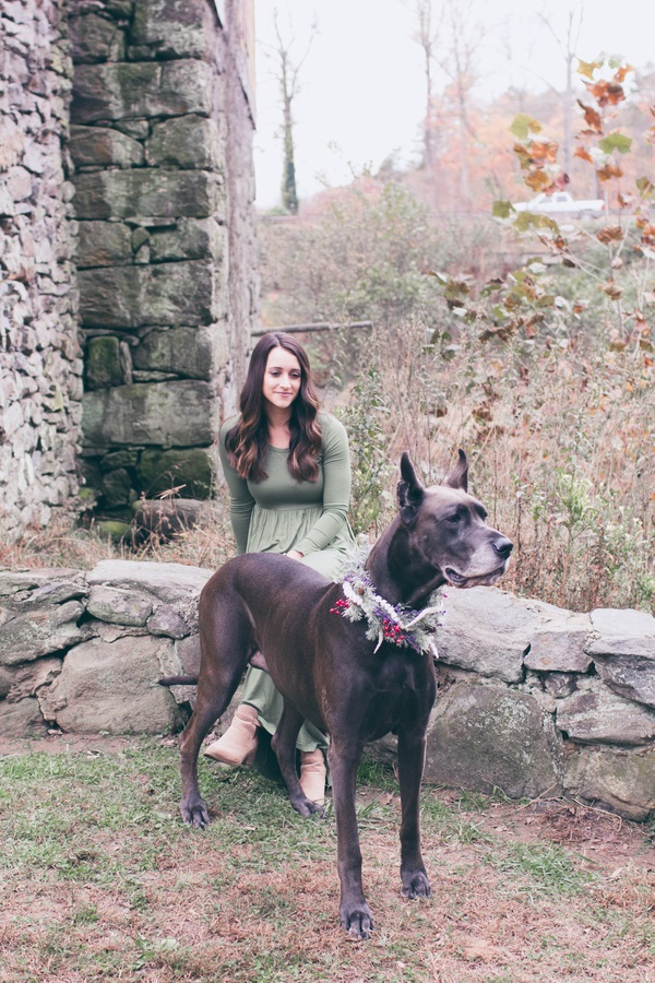 Great Dane Christmas photos, woman sitting on stone wall looking at dog