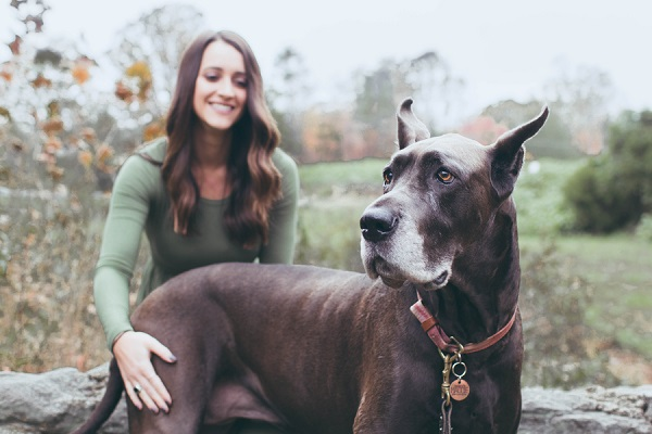 Great Dane and woman, bffs forever, Clemmons lifestyle photography