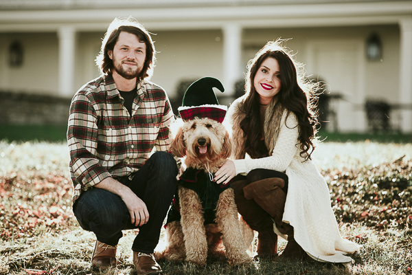 cute Christmas photos with dog, Golden Doodle wearing green elf costume