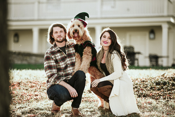 fluffy dog wearing elf costume, Golden doodle, family portraits with dogs, Howliday photos