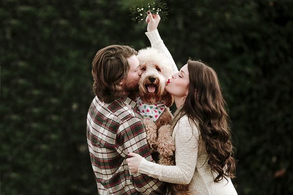man and woman kissing their dog under the mistletoe, Christmas photos, dog portraits