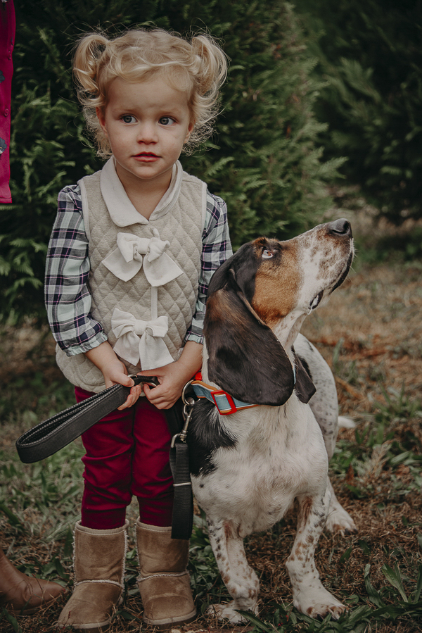 cute little girl and her dog, Basset Hound, Bffs forever,