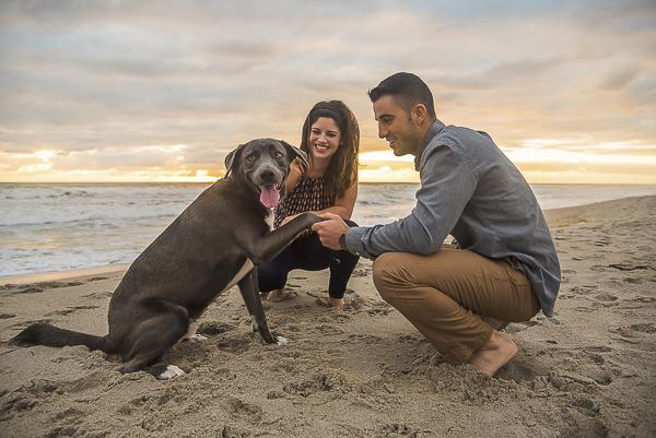 man holding dog's paw on the beach, family beach photos, creative dog photography