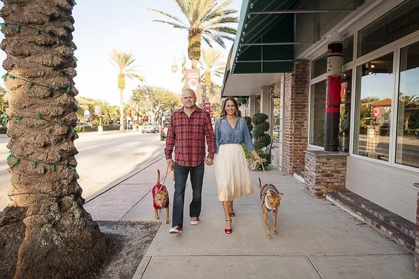 couple holding hands and walking their dogs, ©Alicia Lynn Photography | Central Florida wedding photographer