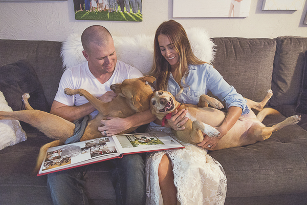 couple sitting on couch with dogs looking at wedding album, dogs are family