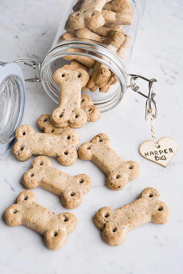 glass jar with Vita Bone dog bones spilling out, tag made with wood burning kit | ©Alice G Patterson Photography Daily Dog Tag
