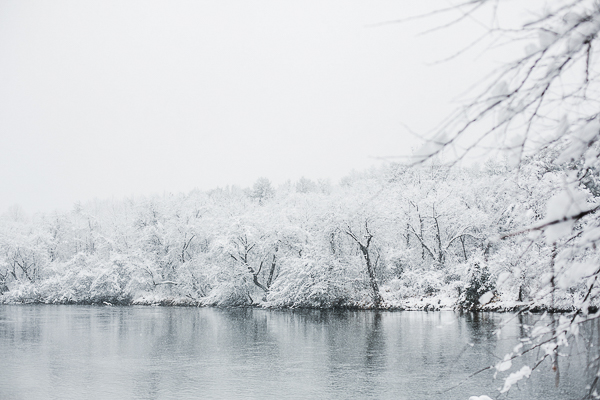 snowy North Carolina, snow covered trees,river,