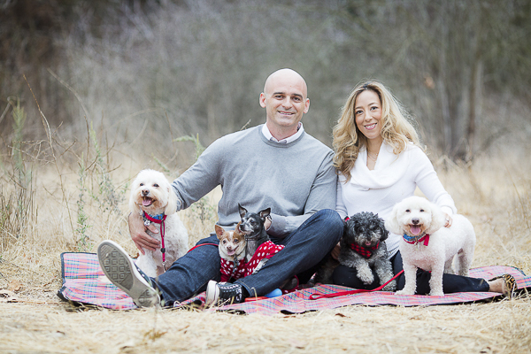 couple on blanket with 5 rescue dogs