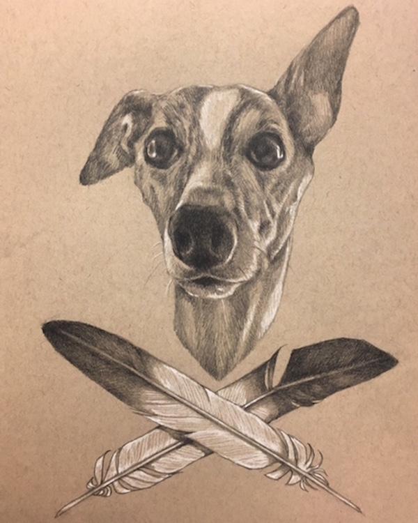 hand drawn dog portrait, sight hound, feathers