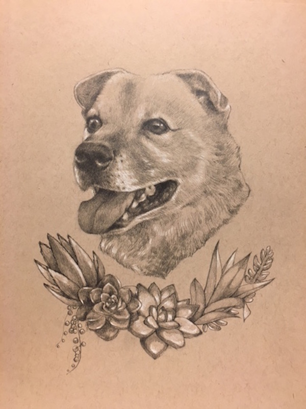 hand drawn dog portrait with succulents, gift idea