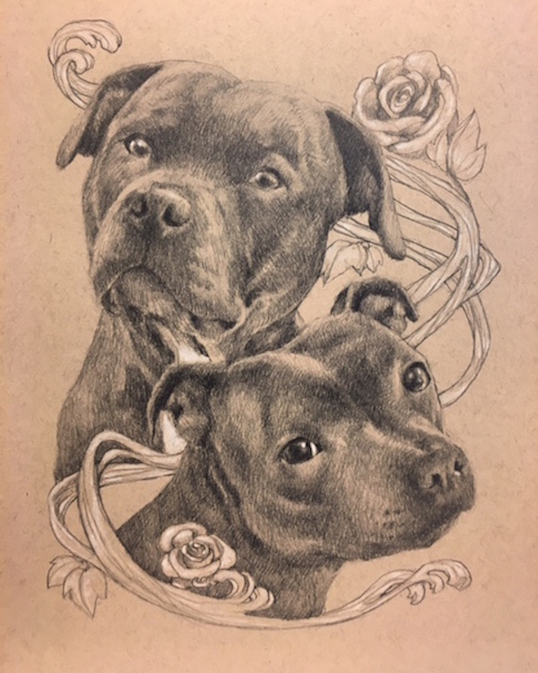 custom drawn pet portraits