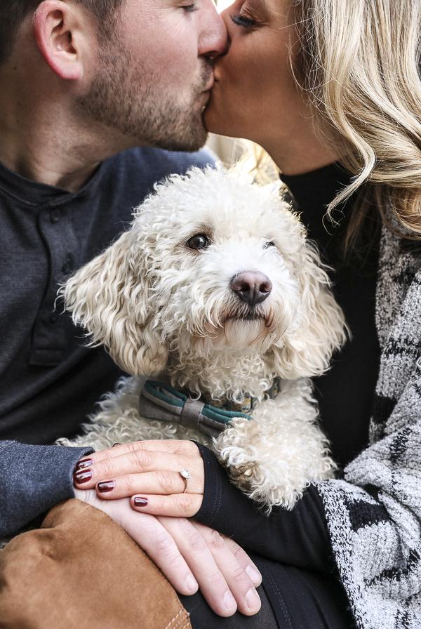 mini goldendoodle, engagement photos with dog