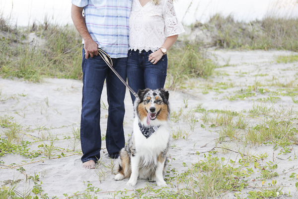 Blue Merle Australian Shepherd, Charleston beach engagement photography