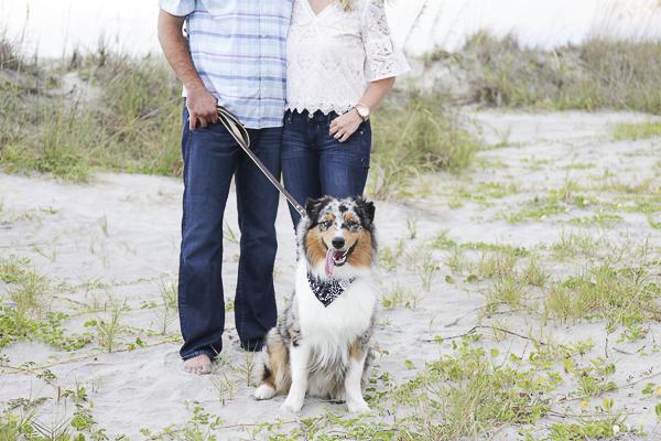 Blue Merle Australian Shepherd, Charleston beach engagement photography
