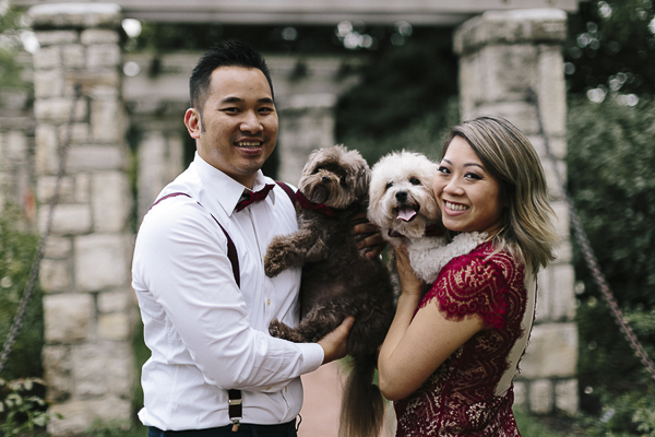 Shiranians, Pomeranian-Shih Tzu mix, engagement pictures with dogs