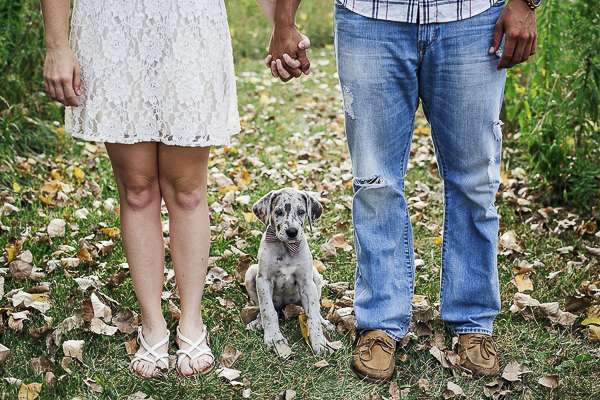 engagement photos with puppy, Great Dane puppy sitting between couple who are holding hands