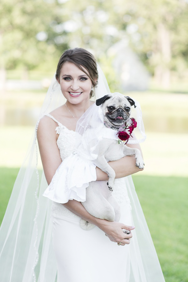 bride holding Pug in wedding dress, creative ways to include dog in wedding