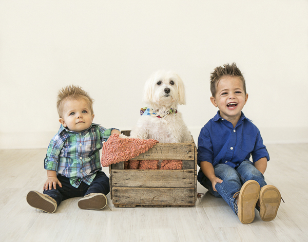dog in wooden box sitting between toddler boys, family pet photography